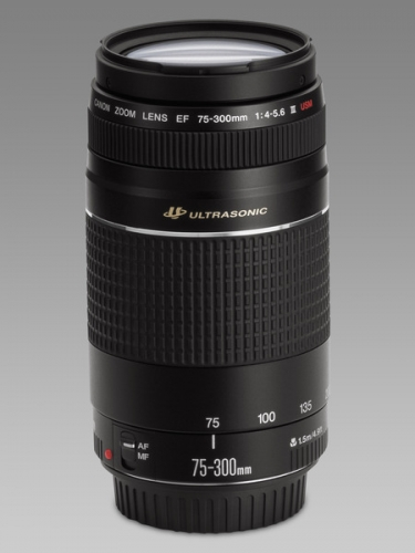 4bf0be3b881 Canon EF 75-300mm f/4-5.6 III – Used – Φωτογραφικά Είδη Μάρκος ...